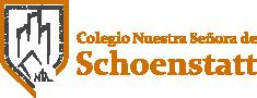 logo_cnss_home